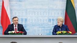 Ważne słowa Dudy na Litwie. Odniósł się do prezydentury Kaczyńskiego - miniaturka