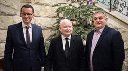 Poller: Jak niemiecki agent Orban wymusił na Kaczorze porozumienie z UE, czyli świat według totalnych - miniaturka