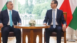 Ryszard Czarnecki: Dziś Węgry, wczoraj i jutro- Polska. Solidaryzujmy się z Madziarami! - miniaturka