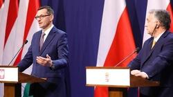 Spotkanie premierów Polski i Węgier: Porozumienie budżetowe musi być zgodne z traktatami i ustaleniami z lipca - miniaturka