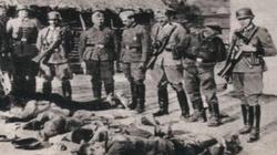 Historyk Goetz Aly: zbrodnie niemieckie, a nie ,,nazistowskie'' - miniaturka