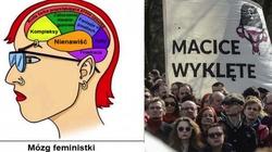 Co myślą sobie feministki...organem myślenia! - miniaturka