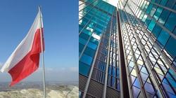 COVID-19 nie zatrzymał inwestycji zagranicznych w Polsce - miniaturka