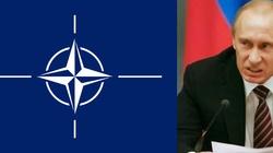 Czarnogóra została członkiem NATO! To cios dla Putina - miniaturka