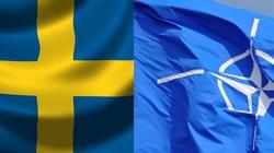 Szwedzka armia boi się Rosji? - miniaturka