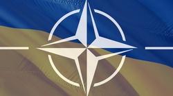 NATO potwierdza: Drzwi do NATO otwarte dla Ukrainy i Gruzji - miniaturka