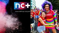 Uwaga manipulacja! Platforma NC + promuje homoseksualizm! - miniaturka