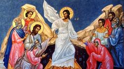 Papież: Zmartwychwstania doświadczamy już teraz - miniaturka