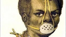 Psychopaci z Karaibów. A co na to wielcy francuscy filozofowie? - miniaturka