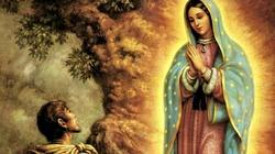 Brzemienna Najświętsza Maryja Panna z Guadalupe - miniaturka