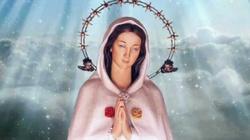 Róża Duchowna z Montichiari. Modlimy się 8 grudnia - DZIŚ - miniaturka