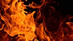 Lewacy wzniecili pożary w Hamburgu! - miniaturka