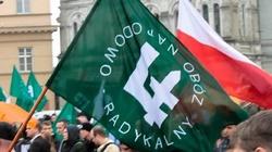Chrzest Polski ku chwale ONR? Platformie po prostu odbiło - miniaturka
