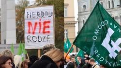 Prokurator: Na marszach śmierci zniewaga krzyży i symboli narodowych, ONR powiadamia o przestępstwie - miniaturka