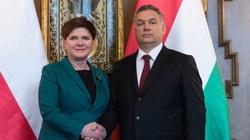 Cameron i Orban mocno wspierają Polskę - miniaturka