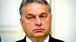 Będzie rezolucja PE ws. Polski? Na Węgrzech nie wyszło - miniaturka