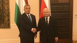 Polska i Węgry się nie ugną! Müller: Podtrzymujemy nasze stanowisko - miniaturka