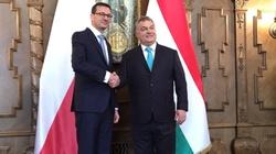 Orban: Dziękujemy panie premierze, dziękujemy Polsko! - miniaturka