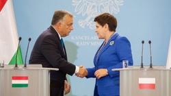 Szydło i Orban razem przeciw nadmiernej władzy Brukseli - miniaturka
