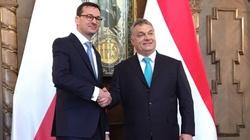 Orban: 'Jeszcze Polska nie zginęła'!!! Piękne podsumowanie spotkania z Morawieckim - miniaturka