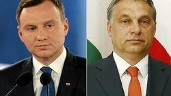 Węgrzy są wdzięczni Polakom. Przyjazd prezydenta Dudy to zaszczyt - miniaturka