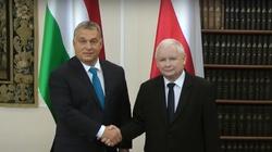 Premier Orban o prezesie PiS ,,Ekscelencja Kaczyński'', o premierze Morawieckim ,,Szef'' - miniaturka