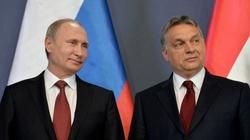 To Putin i Orban nastawili Trumpa przeciw Ukrainie? - miniaturka