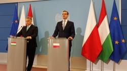 'Przed nami długie lata współpracy!'-konferencja Morawieckiego i Orbana - miniaturka