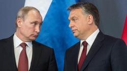 Szymański o spotkaniu Orbana z Putinem: Orban popełnia błąd. Ta polityka nie jest dobra dla Europy, a takie gesty nie pomagają Węgrom - miniaturka