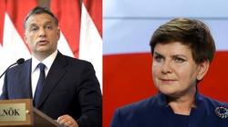 """Orban do Szydło: """"Niezależnie z której strony byłaby wymierzona niegodziwość w stronę Polski, to pani premier i cały naród polski mogą liczyć na wsparcie Węgier!"""" - miniaturka"""