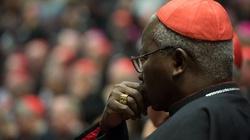 Abp Palmer-Buckle: Afryka nie blokuje synodu! - miniaturka