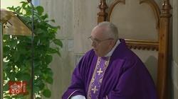 Papież w z bólem skomentował raport dot. McCarricka - miniaturka