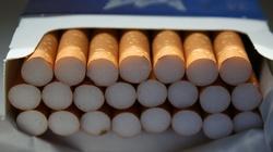 Cela Plus: Gang tytoniowy rozbity. Skarb Państwa stracił prawie 121 mln złotych - miniaturka