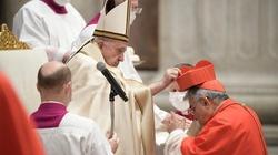 Papież ustanowił 13 nowych kardynałów - miniaturka