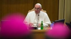 """Papież za """"zdrową decentralizacją"""" Kościoła - miniaturka"""