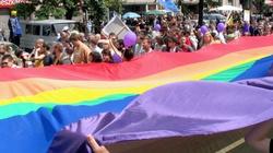 Dziś geje wraz z  Żydami będą ,,edukować'' Polaków - miniaturka