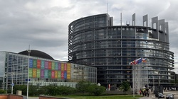 Ewakuacja Parlamentu Europejskiego!  - miniaturka