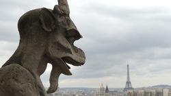 Episkopat Francji alarmuje ws. in vitro dla par lesbijskich oraz chimer ludzko-zwierzęcych - miniaturka