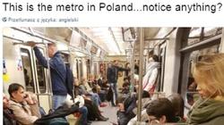Michał Orzechowski: Antypolski rasizm - Polacy nie są 'pod ochroną' - miniaturka