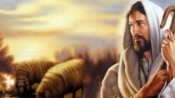 Dzień żarliwej modlitwy o powołania! Niedziela Dobrego Pasterza - miniaturka