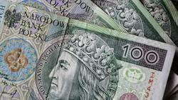 Cela plus: Inwestorzy stracili 50 mln zł. Rozbito zorganizowanę grupę przestępczą - miniaturka