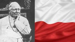 Bł Pius IX obrońca wiary i Polski. Gdy moc ludzka nie była w stanie pomóc Polsce,  zainicjował szturm do nieba - miniaturka