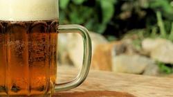Piłeś piwo na bulwarze i dostałeś mandat? No to teraz... - miniaturka