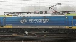 Były prezes i członkowie zarządu PKP Cargo zatrzymani. Straty spółki sięgają ćwierć miliarda złotych! - miniaturka
