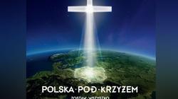 Polska stanęła pod Krzyżem! Jednak to nie koniec! - miniaturka
