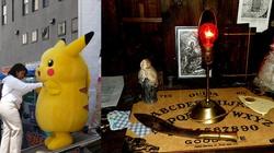 Teluk: Pokemony to gra demoniczna, przedszkole okultyzmu - miniaturka