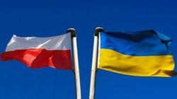 Ukraińcy wolą Polskę od Niemiec. Ciekawe badanie - miniaturka