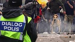 Imigranckie protesty w Szwecji. Goeteborg w ogniu - miniaturka