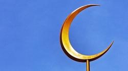 Francja. Zamknięto największy meczet w kraju - miniaturka
