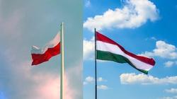 Polska i Węgry. Sprzeczne interesy na wschodzie - miniaturka
